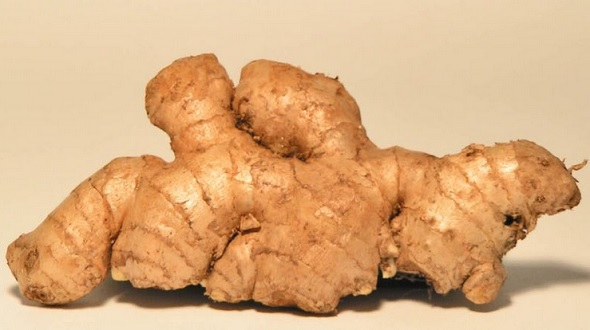 The Health Benefits of Ginger - Ginger Facts and Health Benefits
